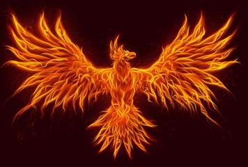 Fénix – symbol znovuzrození