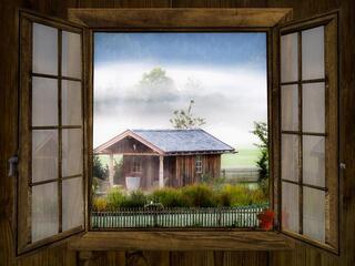 Jak zvýšit imunitu domova?