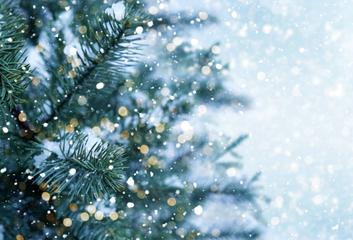 Prosinec: měsíc očekávání, lásky a naděje