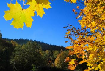 Štědrému září naši předkové projevovali vděčnost