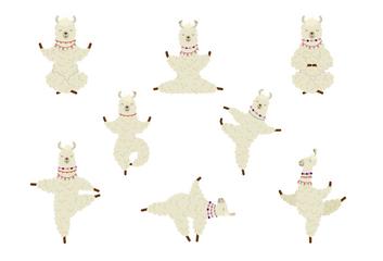 Alpaka – tak trochu jiná jóga