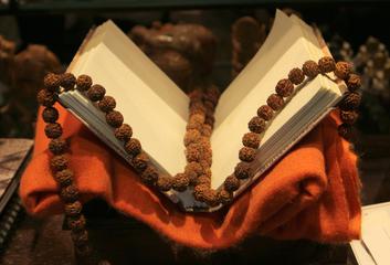 Tradiční jógové texty: Védy
