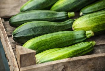 Cuketa – letní královna zahrad i našich kuchyní