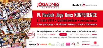 DL konference