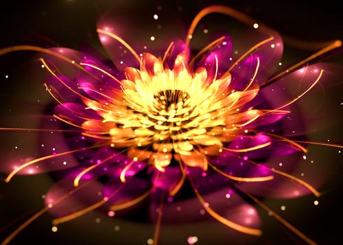 Symbol lotosu a jeho význam v józe