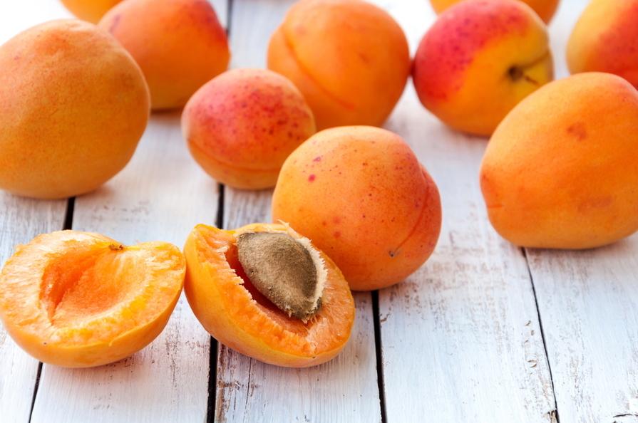 Meruňky – oranžové ovoce, které Češi milují