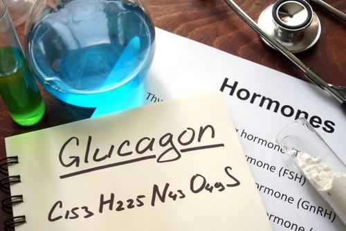 Role hormonů ve výživě a metabolismu – 2. část