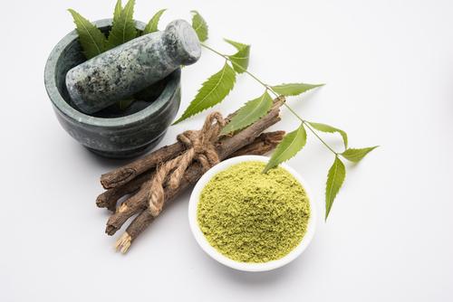 Byliny v ájurvédě: Zederach indický – neem